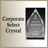 Click this Image to visit the Corporate Crystal Awards category.