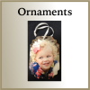 Click this Image to visit the Ornaments category.