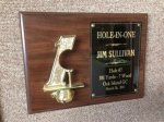 Hole in One Golf Plaque Golf Gift Items